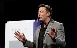 Elon Musk tuyển nhân sự không cần bằng đại học