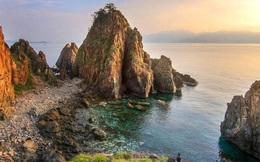 Forbes: Việt Nam lọt top 10 nơi lặn biển đáng đi nhất thế giới trong năm 2020