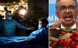 WHO công bố độ nguy hiểm của virus corona Covid-19: Không chết người bằng SARS, trên 80% bệnh nhân chỉ có triệu chứng nhẹ