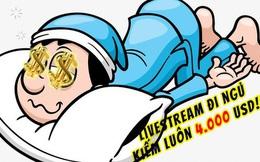 Livestream ở nhà ngủ tránh Covid-19, anh thanh niên kiếm được 4.000 USD, thu hút đến 18,5 triệu người xem