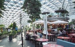 """Các nhà bán lẻ, quán ăn của Singapore """"quay cuồng"""" khi mọi nơi đều vắng bóng người"""
