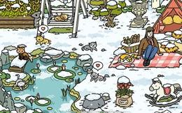"""Để trở thành chủ """"sở thú"""" trong Adorable Home, đây là những điều mà người chơi nhất định phải """"khắc cốt ghi tâm"""""""