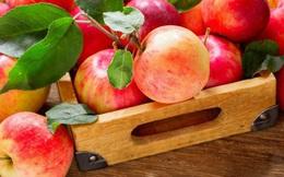 """""""6 quả táo chia đều cho 3 người, tại sao còn lại 2 quả?"""", câu trả lời trong vòng 1 phút giúp cô gái trúng tuyển vào công ty lớn"""