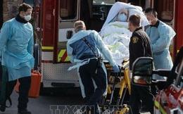 Mỹ xác nhận ca tử vong thứ 12 do virus SARS-CoV-2