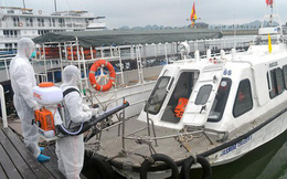 Quảng Ninh phát hiện 4 hành khách có dấu hiệu nhiễm Covid-19