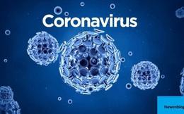 Điều gì đã khiến chúng ta cảm thấy sợ hãi về virus corona mới?