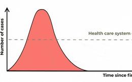 """Biểu đồ này sẽ giải thích: Tại sao """"để Covid-19 lan truyền tạo miễn dịch cộng đồng"""" là một quan điểm cực kỳ nguy hiểm?"""