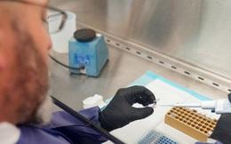 Mỹ cấp phép khẩn cho hệ thống xét nghiệm COVID-19 nhanh gấp 10 lần