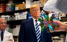 Bác sĩ Nhà Trắng nêu lý do ông Trump không phải cách ly dù tiếp xúc 2 người nhiễm COVID-19