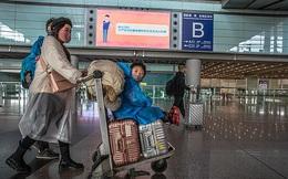 Uống thuốc hạ sốt để được lên máy bay về nước, nữ phó giám đốc nhiễm Covid-19 đối mặt mức án 7 năm tù, khiến 59 người khác phải cách ly khẩn cấp