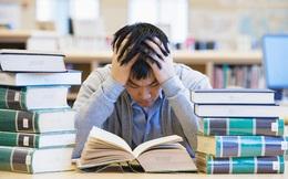 """4 """"điểm chí mạng"""" sinh viên mới ra trường cần khắc phục nếu muốn tìm công việc mơ ước"""