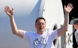 Nếu CEO Tim Cook là bậc thầy kinh doanh, thì CEO Elon Musk là bậc thầy về quảng cáo, mặc dù chưa từng chi dù chỉ 1 xu cho quảng cáo