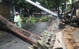 Mạng xã hội lan truyền tin cột điện không có thép gãy trong bão số 5, ngành điện Đà Nẵng nói gì?
