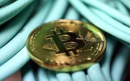 Không phải Bitcoin, đây mới là đồng tiền ảo tăng giá mạnh nhất năm 2017