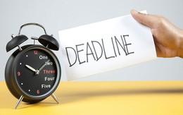 Thay vì nói 'làm nhanh lên' thì đây là cách một vị sếp nên thực hiện để nhân viên tăng tốc đến đích