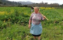 Người nông dân Tây Ban Nha có gương mặt giống Tổng thống Trump gây sốt mạng xã hội