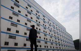 """Người Trung Quốc xây hẳn """"khách sạn 7 tầng"""" để... nuôi lợn"""