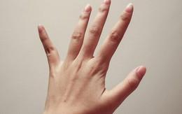 Chưa cần xem đến chỉ tay, bàn tay to hay nhỏ cũng nói lên vận mệnh của một người, nhìn thoáng qua là biết được ngay