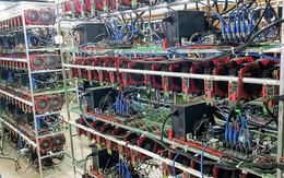 Đầu năm, người Việt mua gần 8.000 'trâu cày' Bitcoin