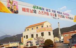 HLV Park Hang Seo được ca ngợi, chúc mừng khắp quê nhà