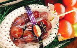 """Những món ăn """"đắt xắt ra miếng"""" giới nhà giàu Việt săn lùng trong tết Kỷ Hợi"""