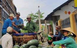 Lý giải dưa hấu trồng ở Việt Nam được lên tem Trung Quốc tại vườn