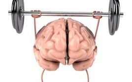 Bác sĩ BV Đại học Y Dược bật mí: 7 điều đơn giản giúp hack não, phát huy sự minh mẫn