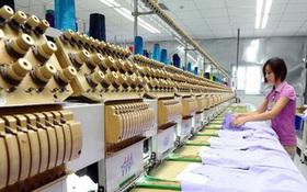Covid-19 buộc doanh nghiệp Việt tăng
