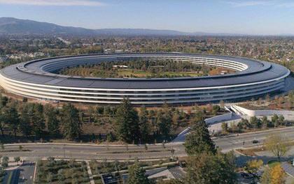 """CEO Apple tiết lộ lý do bạn không bao giờ được phép vào trụ sở """"đĩa bay"""" mới của họ trừ khi thỏa mãn được điều này"""