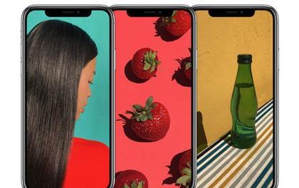 Apple đang gặp khó với các đơn hàng màn hình OLED cho iPhone Xs Plus từ LG