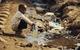 Nửa tỷ người trên thế giới không được dùng nước sạch