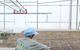 Xây dựng gói tín dụng 60.000 tỷ đồng hỗ trợ nông nghiệp công nghệ cao